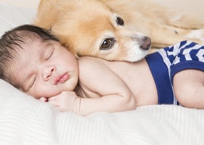 newborn photography with pets