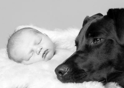 pets and newborn photogrpahy